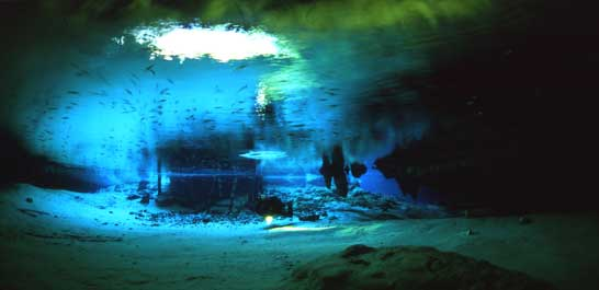 gran cenote in the riviera maya simply one of the best caverns to scuba dive